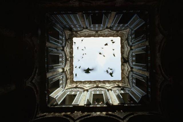 Стая птиц взлетает в закрытом внутреннем дворе в Старой Гаване, декабрь 1987 national geographic, неопубликованное, фото