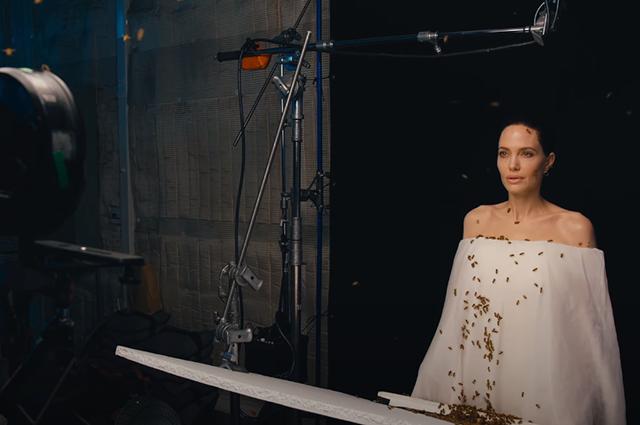 Анджелина Джоли снялась в фотосессии с роем пчел на теле Фотосессии