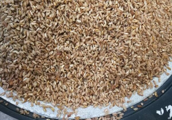 Популярный коричневый рис