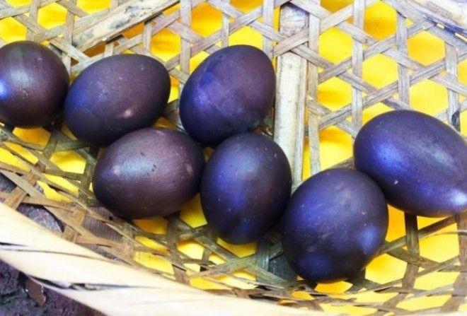Фермер нашел странные яйца ч…