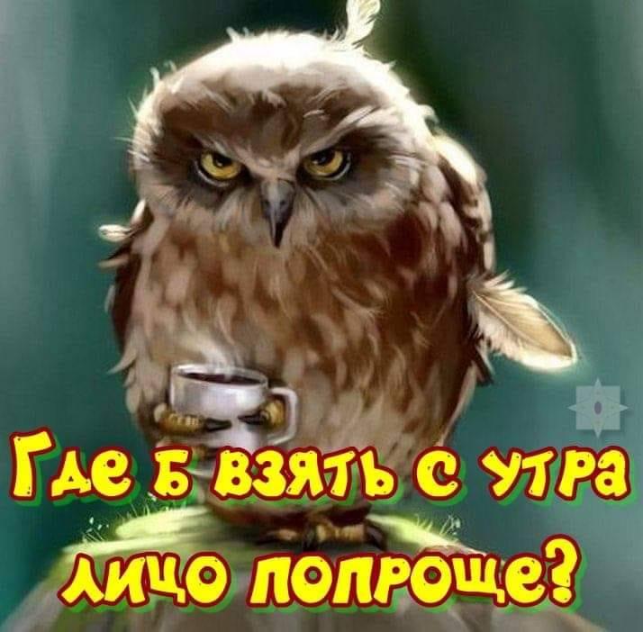 https://mtdata.ru/u15/photo4C2C/20721599548-0/original.jpeg#20721599548