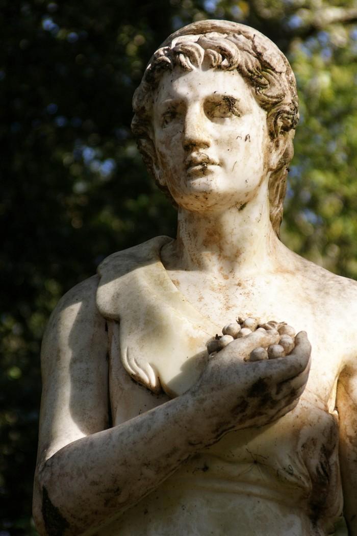 36 интересных фактов о вине