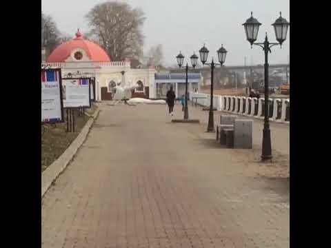 Прокуратура заинтересовалась полетами на вертолете бывшего депутата ГД до ресторанов Костромы
