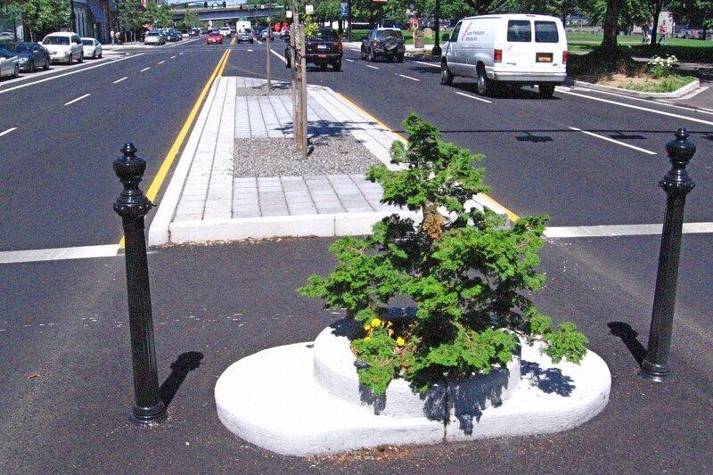 Милл Эндс Парк (Mill Ends Park) - самый маленький парк из одного дерева, расположенный  в Портленде, штат Орегон бывает же такое, деревья, жизнь, интересное, растения, факты