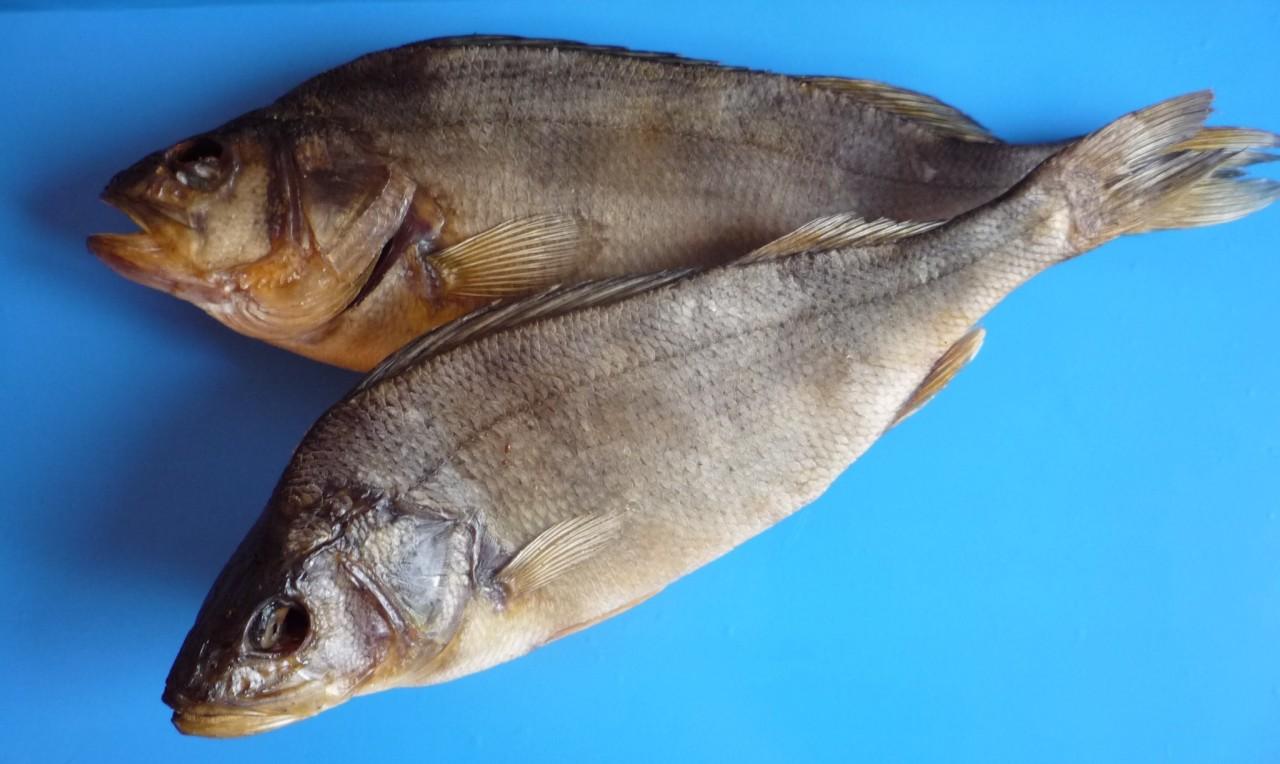 Секрет правильного хранения вяленой рыбы. Лучшая закуска к Пиву!