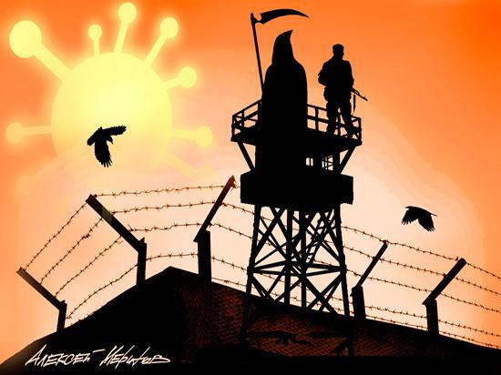 СПЧ решил просить Путина о срочной амнистии заключенные,коронавирус,права человека,Путин,Россия,СПЧ