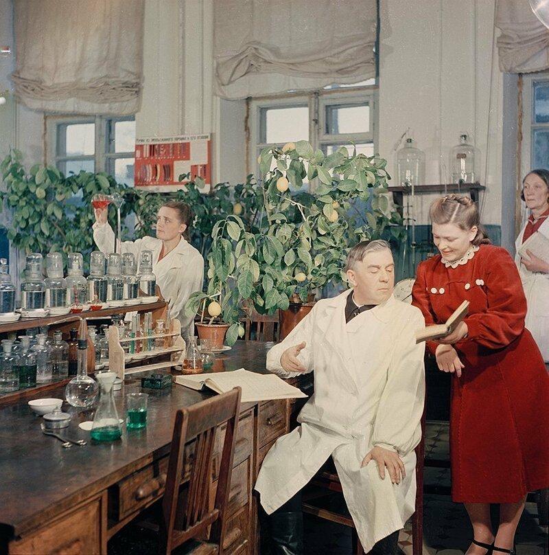 В Павлове на Оке комнатные лимоны можно встретить везде, даже в химической лаборатории, фото А. Рощупкина, 1952 г. СССР, фото, это интересно