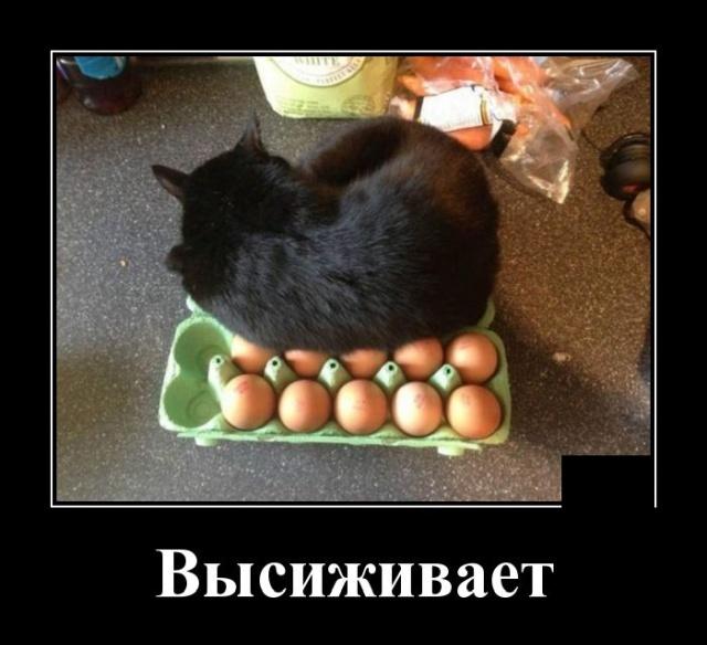 Жизнь как супермаркет, бери что хочешь, но не забывай касса - впереди. За все придется платить!