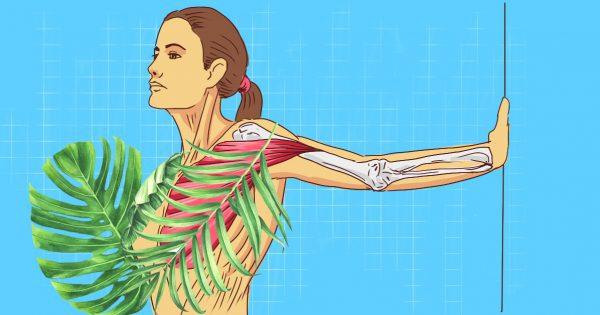 Женщинам после 34 — обязательно! Лучшие упражнения для укрепления грудных мышц от Камиллы Волер.