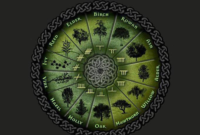 Кельтская астрология: знаки …