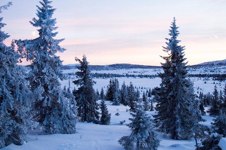 Уютнейшная деревянная хижина в горах Норвегии