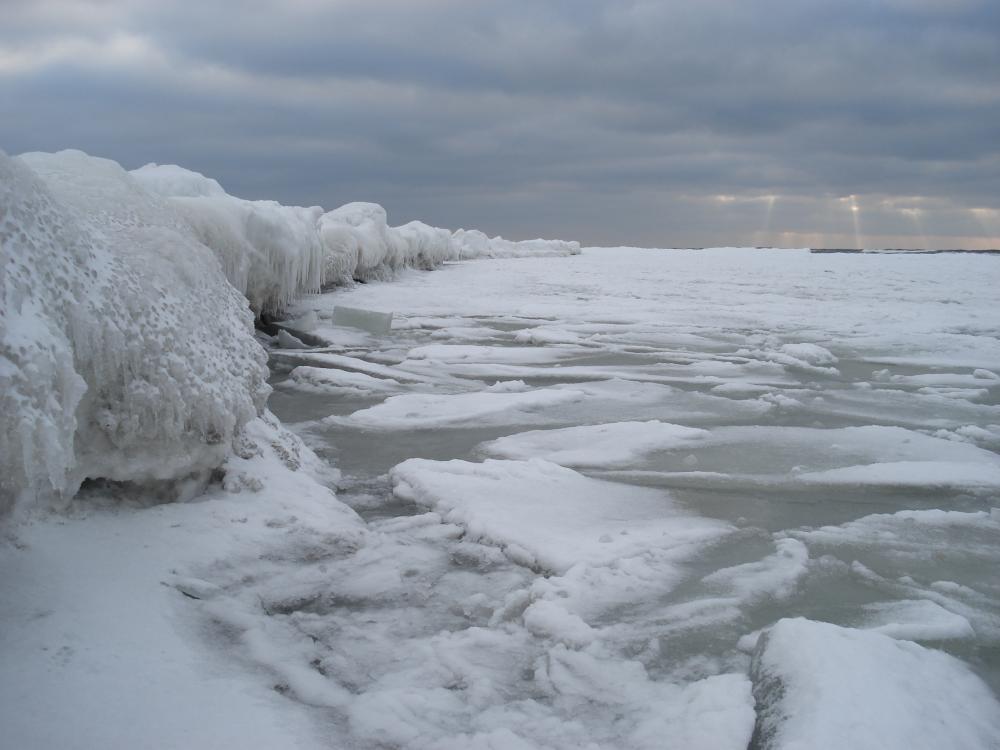 "Картинки по запросу ""замерзло Черное море,"""