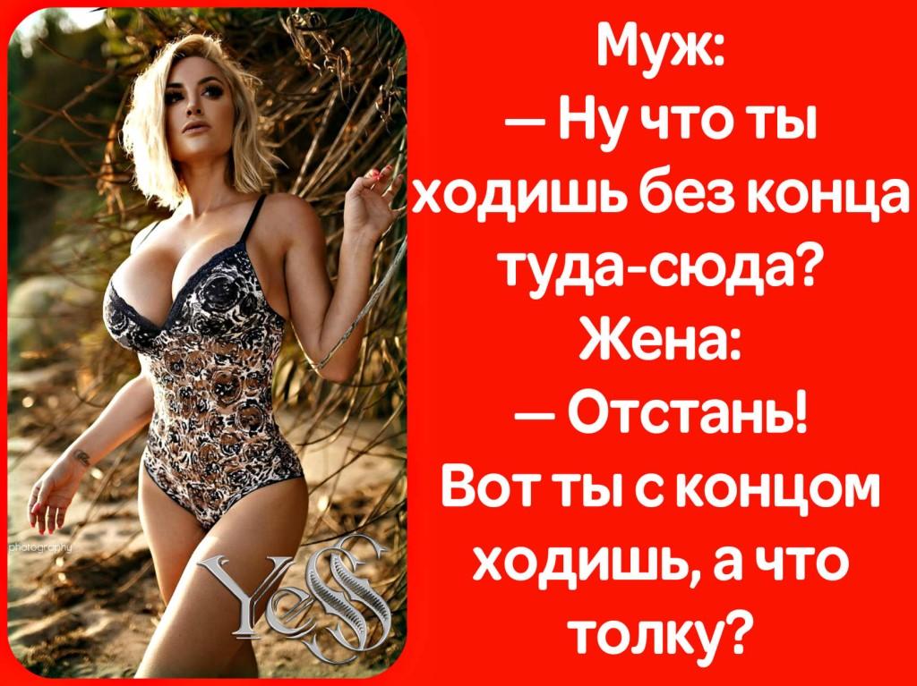 Разговаривают двое приятелей: — Ты знаешь, как тяжело потерять жену?!.. Весёлые,прикольные и забавные фотки и картинки,А так же анекдоты и приятное общение