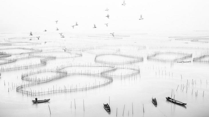 Победители фотоконкурса Siena International Photography Awards 2017 в категории «Путешествия и приключения» 6