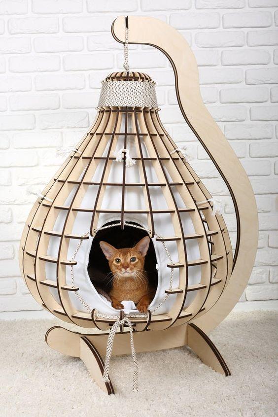 Как дома организовать кошкам максимальный комфорт