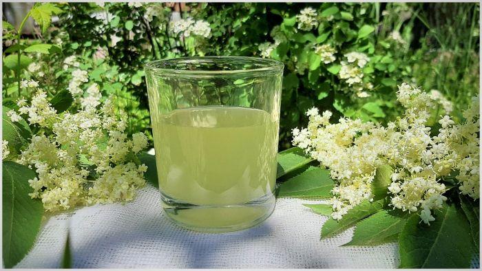 Ликёр из цветков бузины напитки,напитки алкогольные