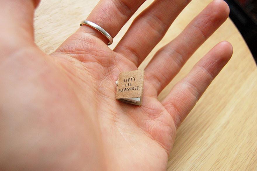 Маленькие радости жизни книга, миниатюра