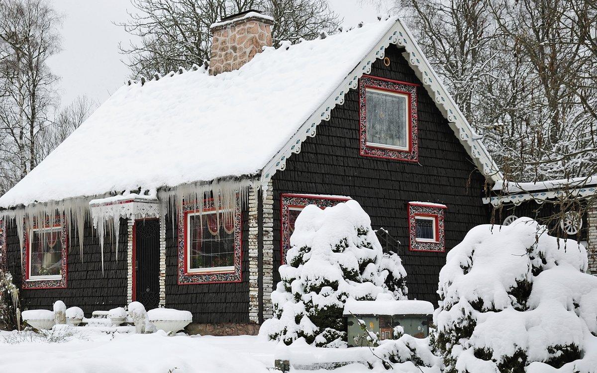 Плюсы и минусы снега в саду