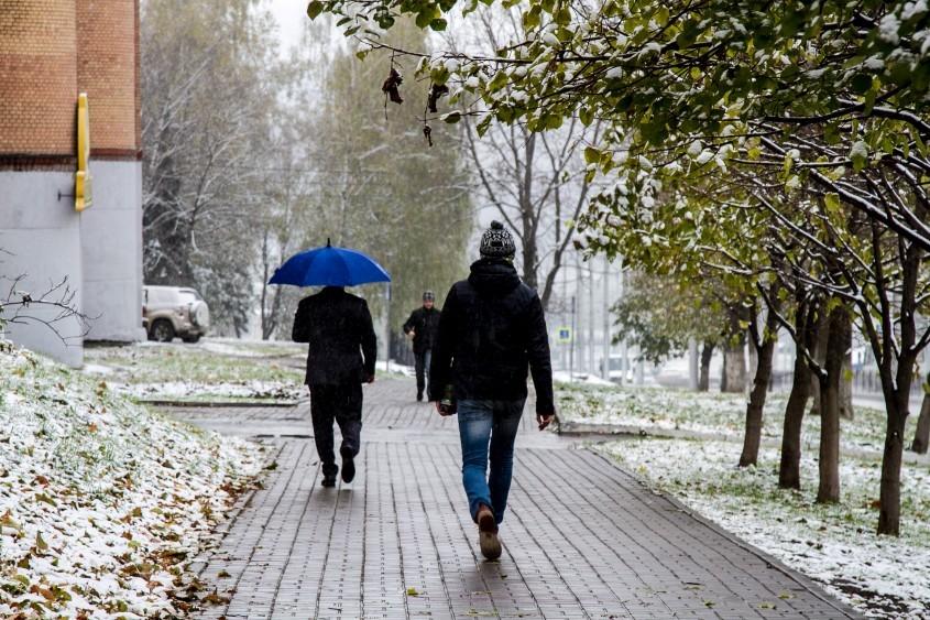 Где снег Зима?