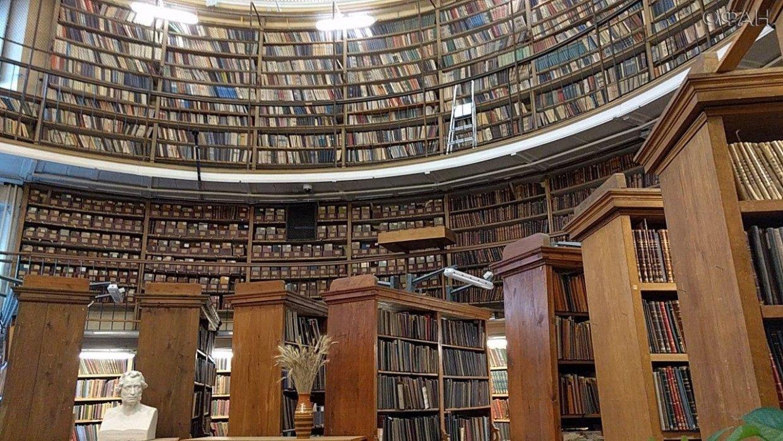 фото библиотек россии выравняла тон лица