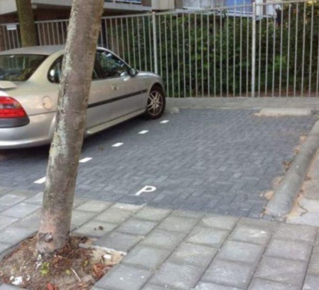 7. Нет, дерево вырубать нельзя parking, авто, дебилизм, машины, парковка, смешно, ужасная парковка, фото