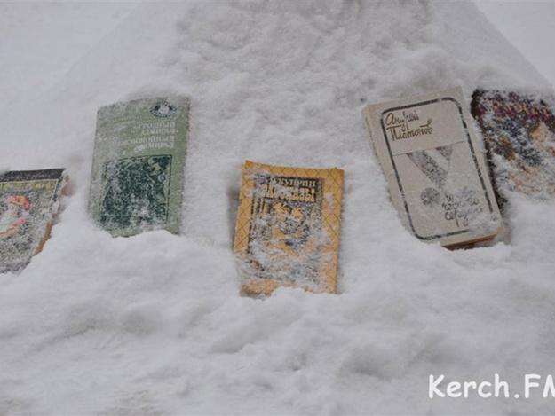 Книжки попали в беду..