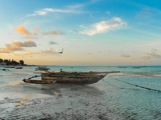 Российские туристы шокировали Занзибар своим поведением на отдыхе
