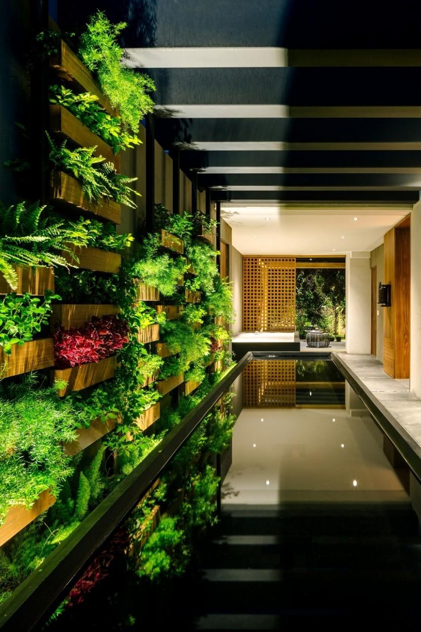 jardin-apartment-4_01