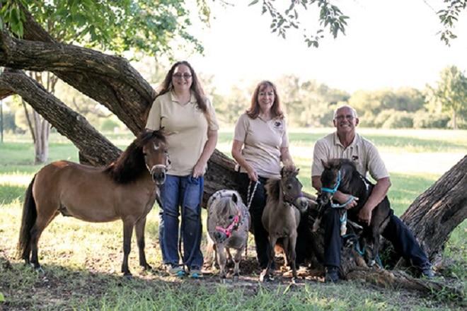 Семья с пони
