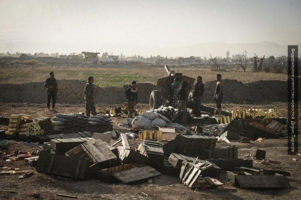 Стихийная атака: сирийцы даю…