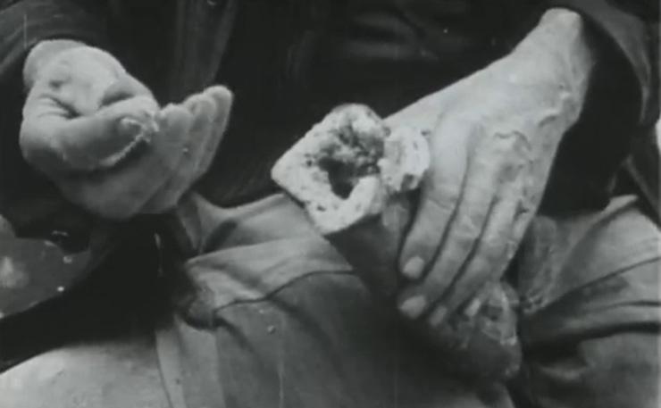 История «проклятого хлеба»