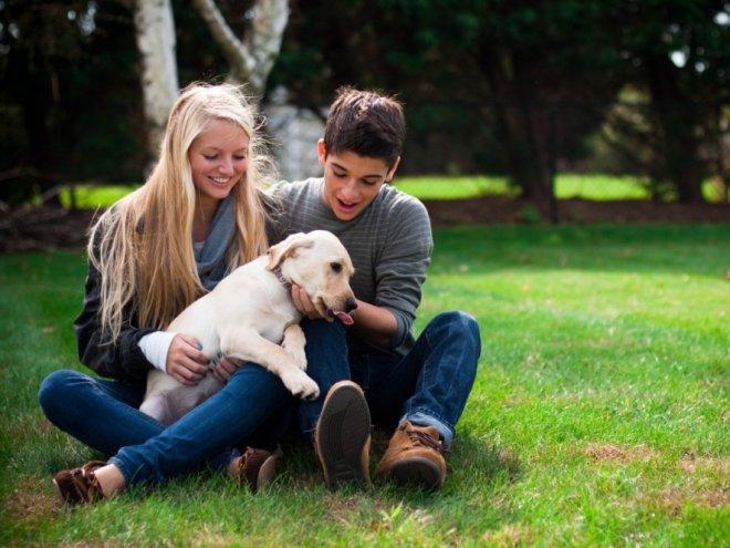 Картинки по запросу пара и собака