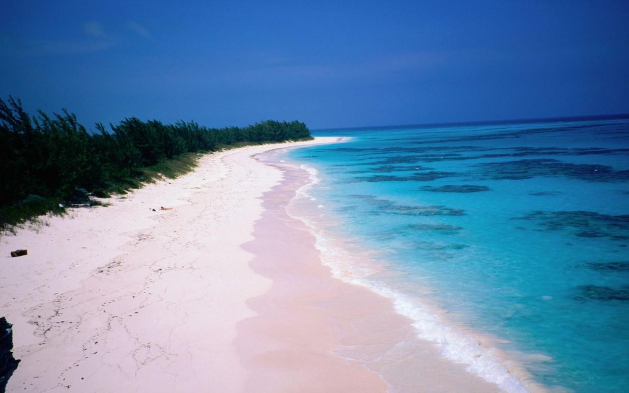 Море с розовым песком фото