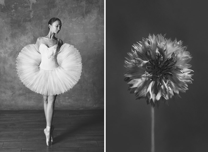картинки юлия и сравнение с цветком воспоминаний жительниц