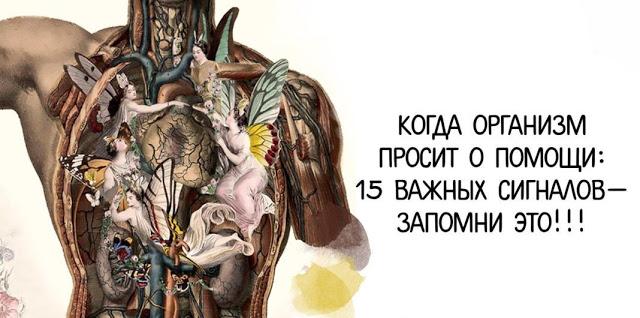 Сигналы о помощи вашего организма