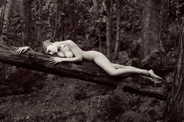 Кристина в лесу. Авторы Тревор и Фэй Йербери