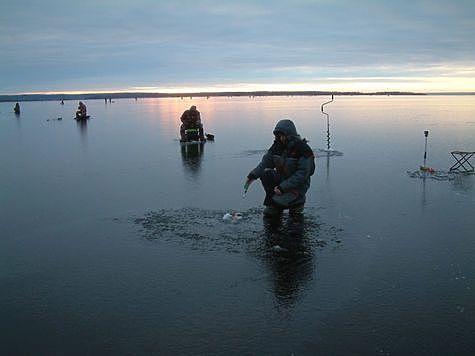 На лед за хищником