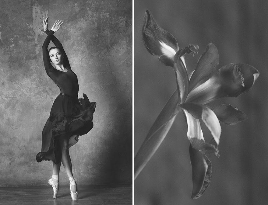 Фотограф создала серию фотографий, сравнивающих цветы и балерин фотография
