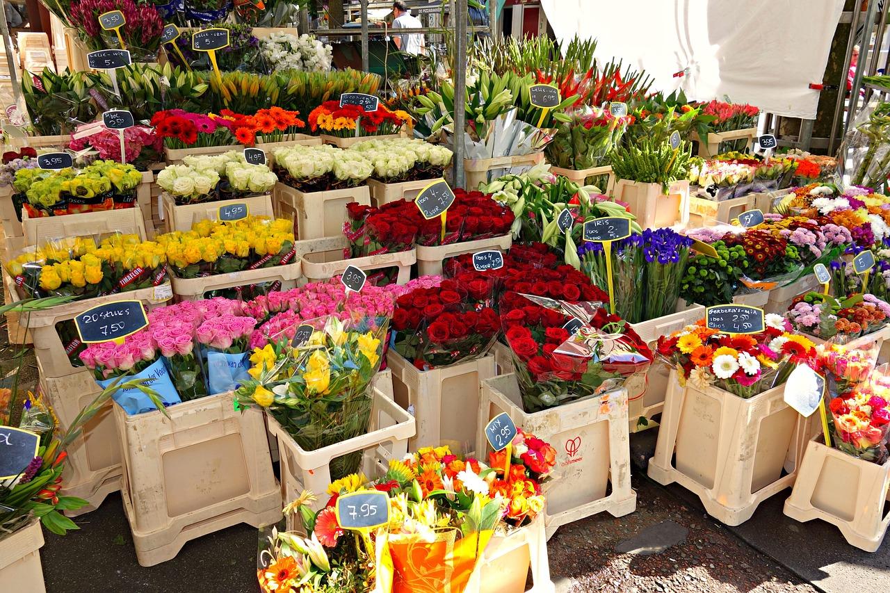 Закупка оптом для продажи цветов и сопутствующих, химки недорого