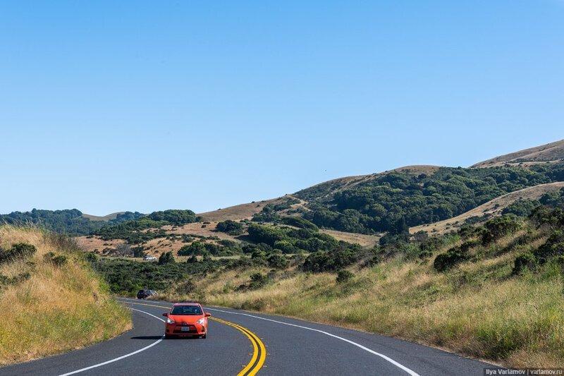 Как американцы любят природу. Путевые заметки, день 5 вино, инфраструктура, калифорния, путевые заметки, сша, туристы