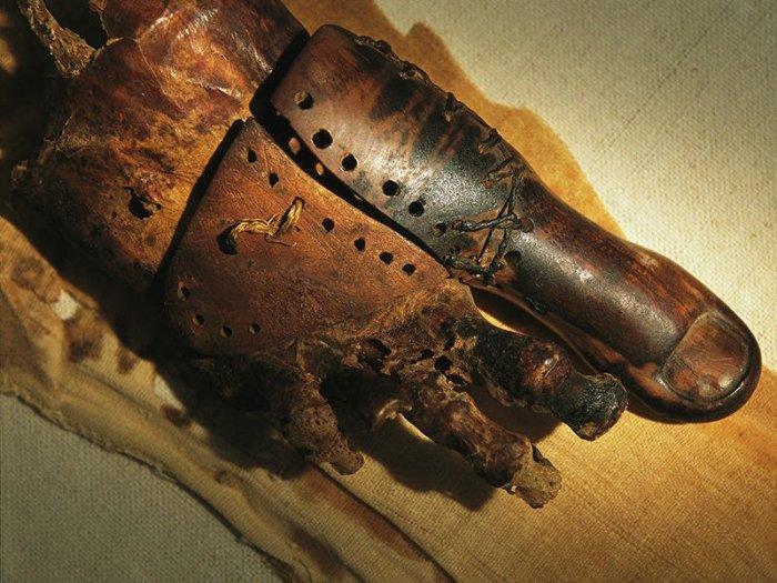 Полезная штука в любую эпоху истории. /Фото: pbs.twimg.com