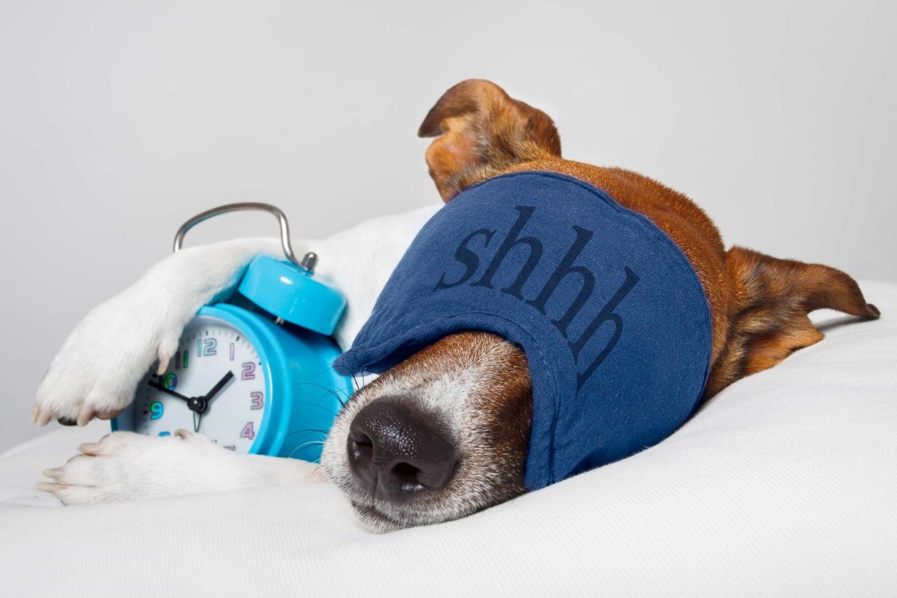 Проблемы со сном и их решения: личный опыт длиной в 15 лет бессоница,здоровье,сон