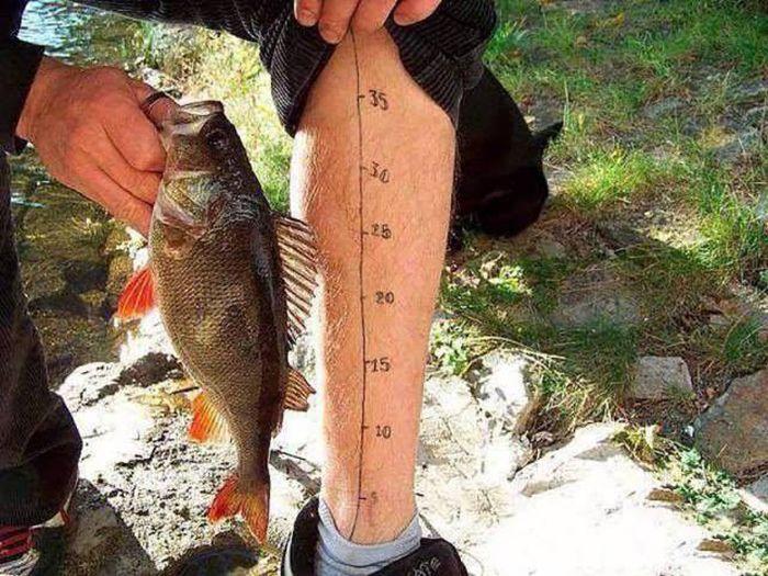 Профессиональным, приколы картинки на рыбалке