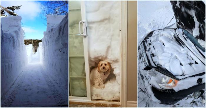 15 фотографий из Канады, в которой выпало более 3-х метров снега