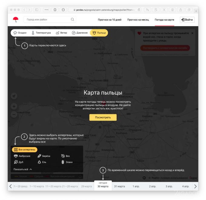 Яндекс.Погода теперь отображает концентрации аллергенов в воздухе