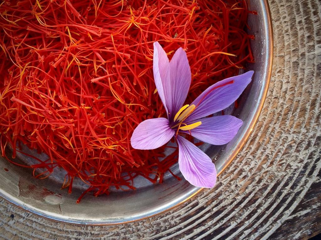 Чем заменить шафран в рецепте блюда: аналогичные приправы и специи