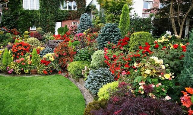 Верх удобства! Идеи сада для ленивых… Можно не ухаживать — растет само, и как пышно!