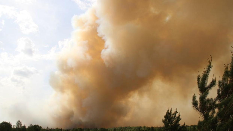 Лесной пожар из Карелии перекинулся через границу в Финляндию Происшествия
