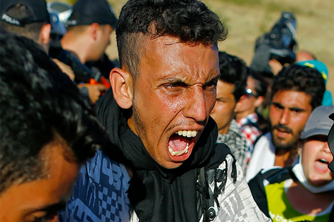 Мигранты дробят Запад. Теперь —официально