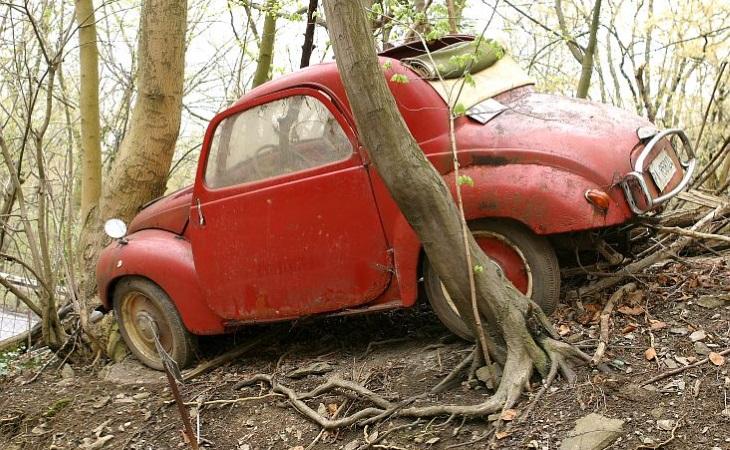 Самая странная автомобильная коллекция в мире